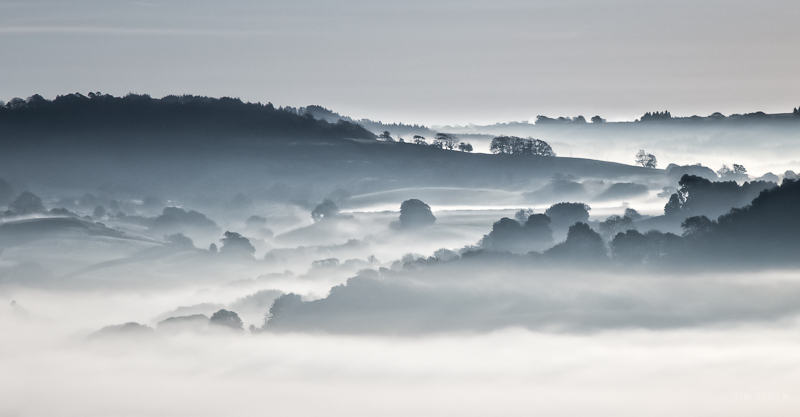 Misty Besminster